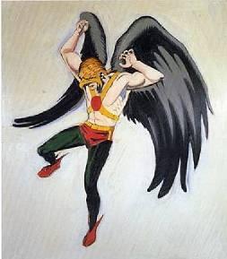 Fig.2 Hawkman